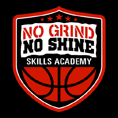 no grind no shine skills academy logo 400x400
